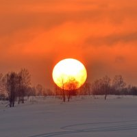Белое солнце февральскоо заката :: Нина Штейнбреннер