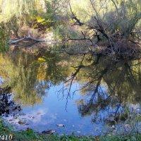 Аксайские пейзажи :: Нина Бутко