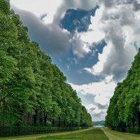 Аллея от Дворца Херренхимзее к озеру :: Надежда Лаптева