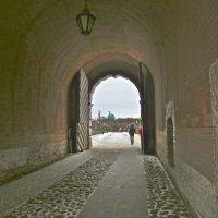 ворота из Петропавловки :: Елена