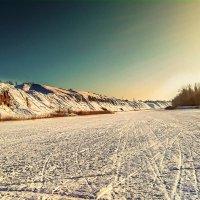 Река Ишим зимой :: Дмитрий Кошкаров