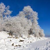 Снег и иней :: Анатолий Иргл
