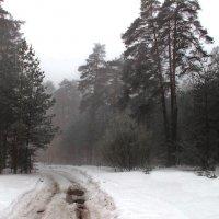 Тумана влажное тепло... :: Лесо-Вед (Баранов)