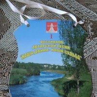 Город Западная Двина. Фестиваль... :: Владимир Павлов