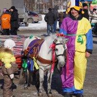 Маленький пони :: Наталия Григорьева