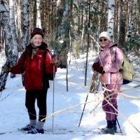 Встреча на лыжне :: Александр Садовский