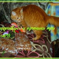 "Сказали ""надо пряники..."" пряники нашёл... :: Елена Федотова"