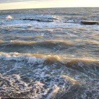 Сочи, море :: Булаткина Светлана