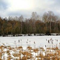 Вспоминая о минувшей зиме :: Милешкин Владимир Алексеевич