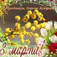С Праздником, Дорогие Женщины! :: Dr. Olver  ( ОлегЪ )