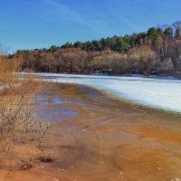 К ледоходу вызревает лёд... :: Лесо-Вед (Баранов)