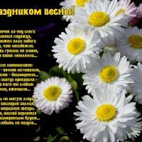 Дорогие женщины, с праздником! :: Светлана