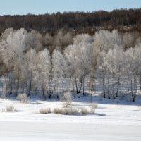 весеннее утро на реке :: Евгений Фролов