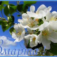 С праздником милые дамы ! :: nadyasilyuk Вознюк