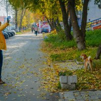Прогулка по городу :: Michael Averkiev