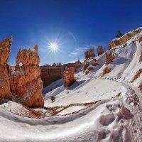 Another sunny morrning… :: Roman Mordashev