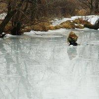 Зимний рыбак :: Александр Бурилов