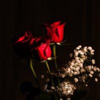 С праздником Вас милые дамы! :: Sergey