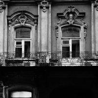 Два окна, одна дверь :: Дарья :)