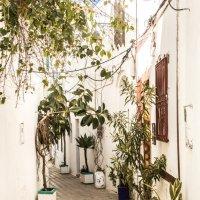 Асила, Марокко :: Yana Fizazi
