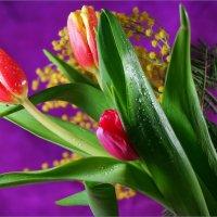 Поздравляю с праздником 8 марта!! :: Андрей Заломленков