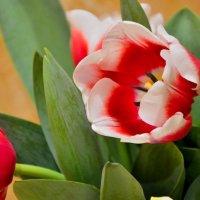 Поздравления с праздником!!! :: Мария Климова