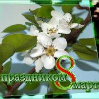 ВСЕМ, ВСЕМ, ВСЕМ !!! :: Юрий Ефимов