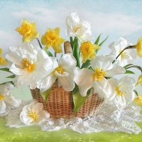 С праздником весны! :: Алла Шевченко