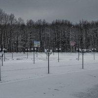 winter :: Юлия Денискина