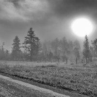 Солнце :: Sergey Miroshnichenko