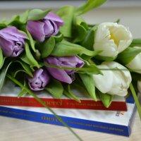 С Днём 8 марта! :: Михаил Столяров