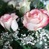 """""""Как хороши, как свежи были розы  ..."""" :: Galina Dzubina"""