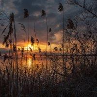 Загадочный зимний вечер :: Юрий Клишин