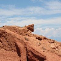 каменный кот :: Шамиль Чавкин