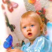 Бабочки :: Андрей Володин