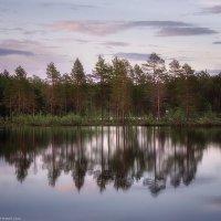 На Соловецком озере :: Александр Бобрецов