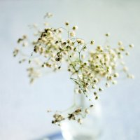 Скоро весна :: Елена Дорогина