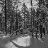 Снежные арки :: vladimir