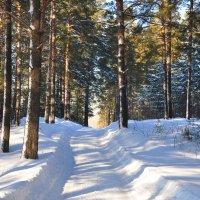 Зимняя дорога :: Алексей http://fotokto.ru/id148151Морозов