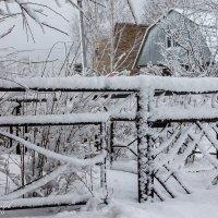 Последний снег :: Mikhail Andronikov