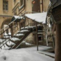 Петербург...По местам хоженым... :: Domovoi
