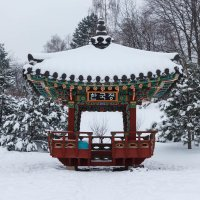 Уголок зимнего сада :: Андрей Нибылица