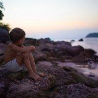 Сиреневый закат :: Елена Заводнова