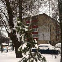 Прощальный танец зимы :: Елена Семигина
