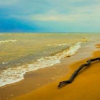 Холодное Балтийское море :: Vsevolod Boicenka
