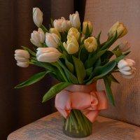 Тюльпаны :: Ксения Паращенко
