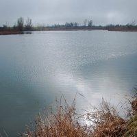 озеро :: Олеся Енина