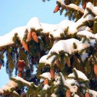 была зима :: валя