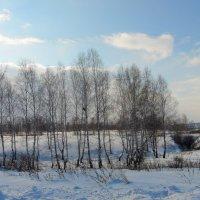 В ожидании тепла. :: nadyasilyuk Вознюк