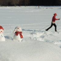 Последний лыжный забег...а потом весна :: Елена strekoza7722